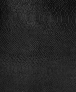 Echantillon-Poulain-Python