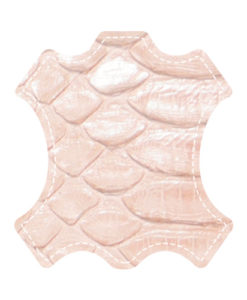 modele-particulier-_0006_icone-python-rose-poudre